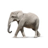 Grey Walking Elephant vector clip art image