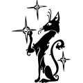 Black cat reaching for the stars