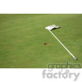 golf green with flag  jpg
