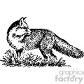 black and white fox vintage vector vintage 1900 vector art GF