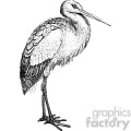 old vintage distressed stork retro GF vector design vintage 1900 vector art GF