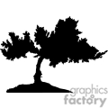 black and white tree gif, png, jpg, eps