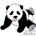 Baby panda cub playing