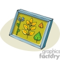 cartoon leaves in a shadow box  gif, png, jpg, eps, svg, pdf