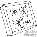Black and white outline of butterflies in a shadow box