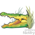 Alligator lurking behind swamp foliage