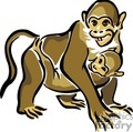mother monkey holding her baby gif, jpg