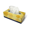 facial tissues handkerchief cleaning care softness box   2l3015lowres photos objects