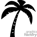 plam tree silhouette