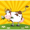 Dairy Cow With Flower In Mouth On A Meadow And Sunburst
