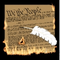we the people constitution burning illustration