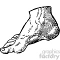 cousin jehan vintage right foot vector anatomy art  gif, png, jpg, eps, svg, pdf