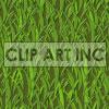 091605-grass