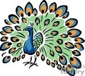 colorful peacock gif, jpg