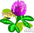 flower flowers plant plants butterfly butterflies   rastenia-013 clip art nature flowers  gif, jpg