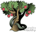 the forbidden fruit tree in the tree of knowledge gif