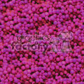 background backgrounds tiled tile seamless watermark stationary wallpaper grape grapes