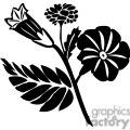 12-flowers-bw