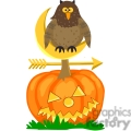owl sitting on a pumpkin