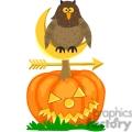 owl sitting on a pumpkin