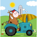 brown-cow-on-a-tractor