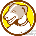 jack russell dog HEAD CIRC