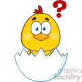 royalty free rf clipart illustration cute yellow chick cartoon character hatching from an egg with question mark vector illustration isolated on white