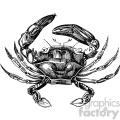 old vintage distressed crab retro GF vector design vintage 1900 vector art GF