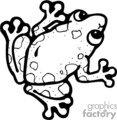 black and white tree frog
