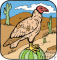 Turkey buzzard perched on green cactus