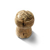 cork champagne top festivity celebration   2e5501lowres photos objects