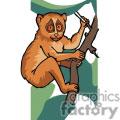 galagos monkey gif, png, jpg