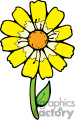 yellow daisy gif, png, jpg, eps