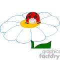 cartoon lady bug sitting on a daisy
