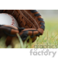 baseball glove in grass  jpg