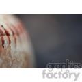 baseball left  jpg