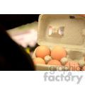 carton of eggs  jpg