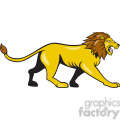 lion walking side ISOLATED