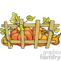 thanksgiving pumpkins growing along a fence