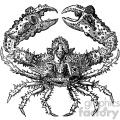 old vintage distressed crab retro vector design vintage 1900 vector art GF