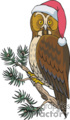 Owl Wearing a Santa Hat Sitting on a Pine Tree Branch
