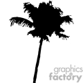vector vinyl-ready vinyl ready cutter eps jpg gif png tree trees nature black white profile silhouette silhouettes palmtree palmtrees palm tropical gif, png, jpg, eps