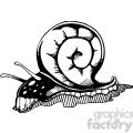 snail tattoo design