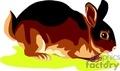 Brown and tan bunny rabbit