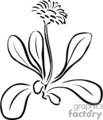 plant plants flower flowers daisy   plnts027_bw clip art nature  gif