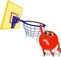 1004basketball005